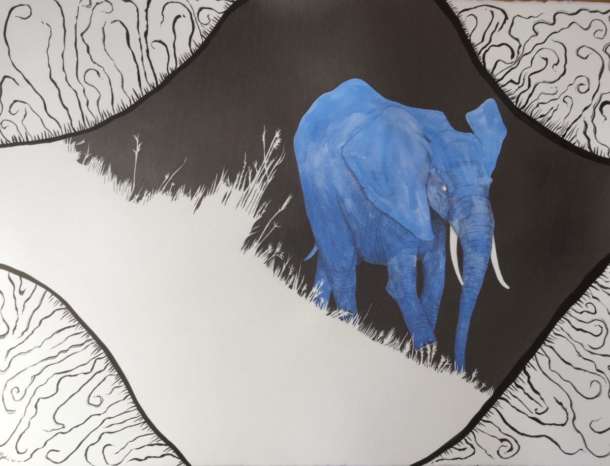 "Insomnia: African Savannah Elephant. 22"" x 30"". graphite/gouache/ink on paper."