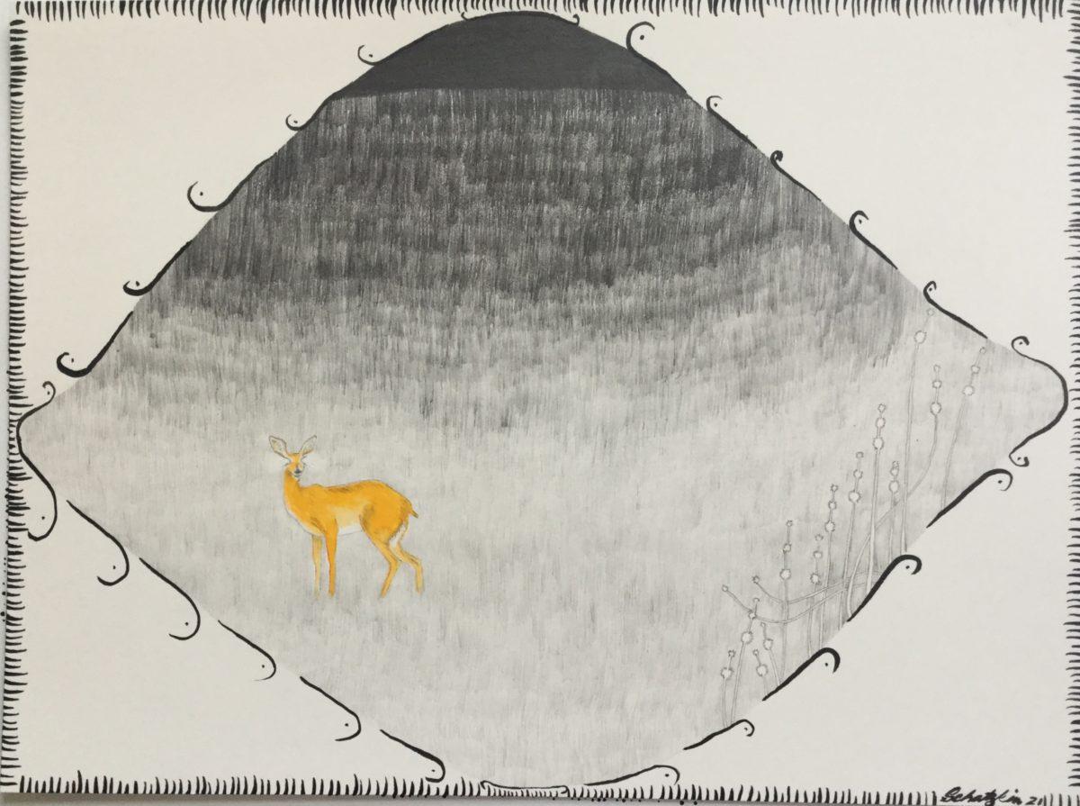 "Vanishing Expert: Steenbok. 9"" x 12"". graphite/gouache/ink on paper."