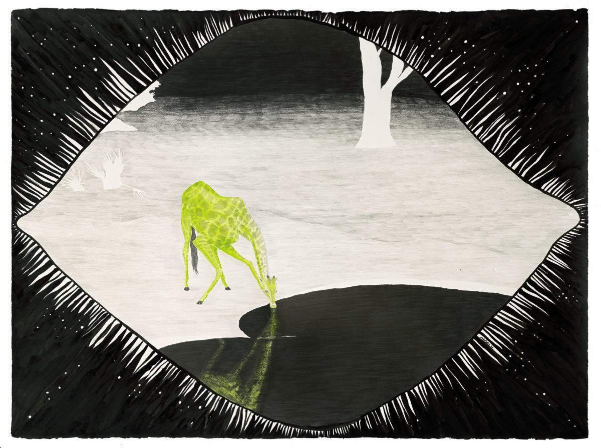 "Awkward with a Purpose: Angolan Giraffe. 22"" x 30"". graphite/gouache/ink on paper."