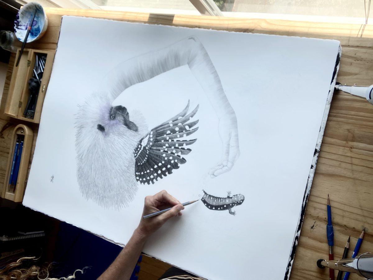 Artemis Laura Schatzkin drawing in her studio.