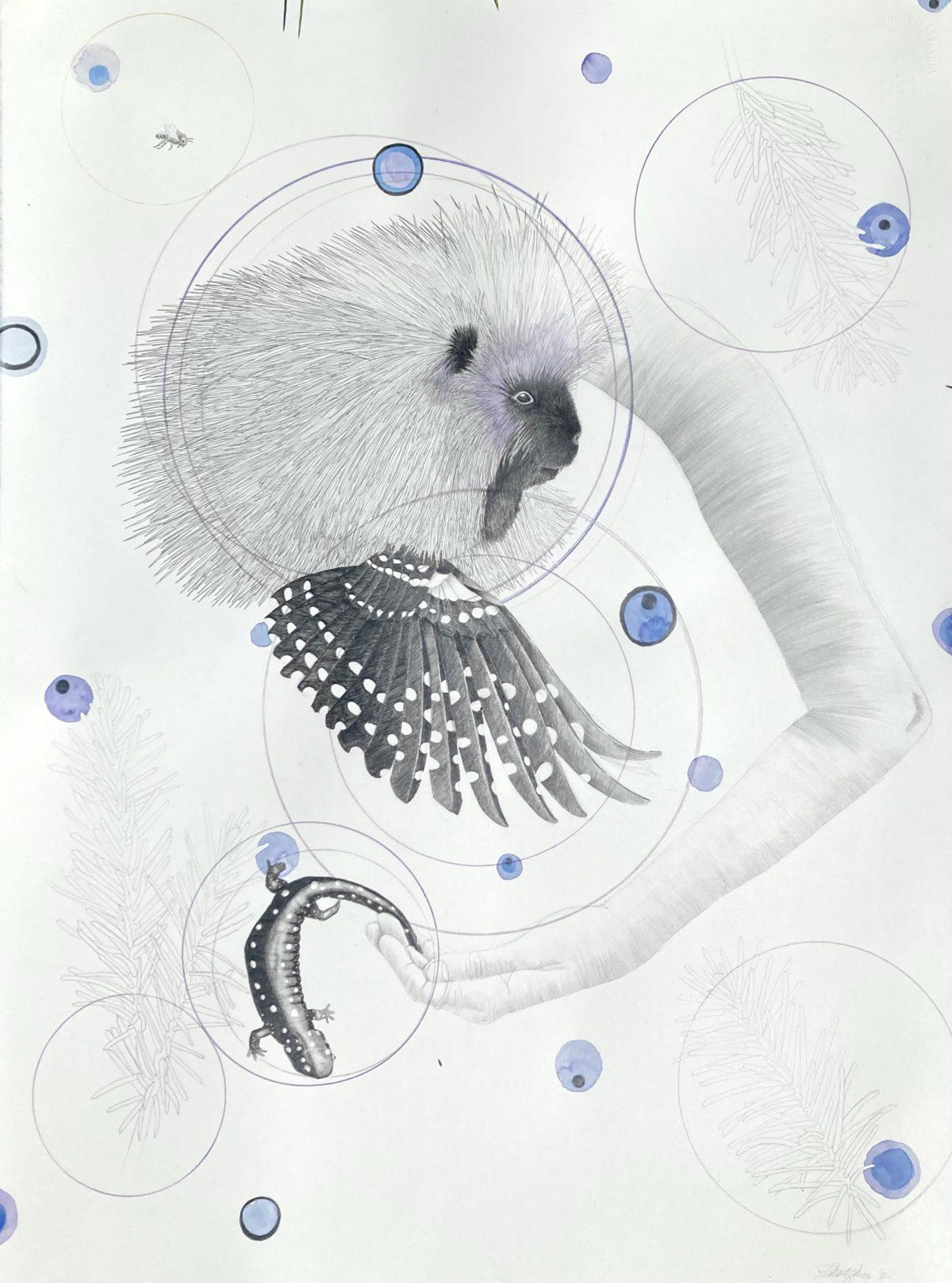 """Punk Aesthetic: Porcupine. 22.5"""" x 30"""" graphite/gouache"""