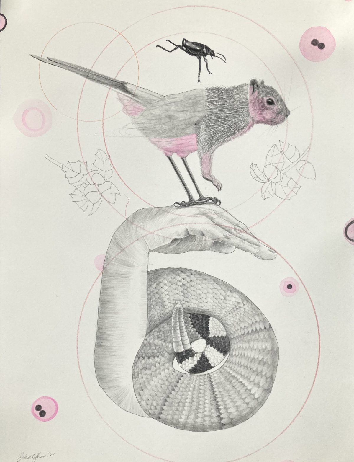"Mocking: Squirrel and Mockingbird ©2021 12"" x 16"""